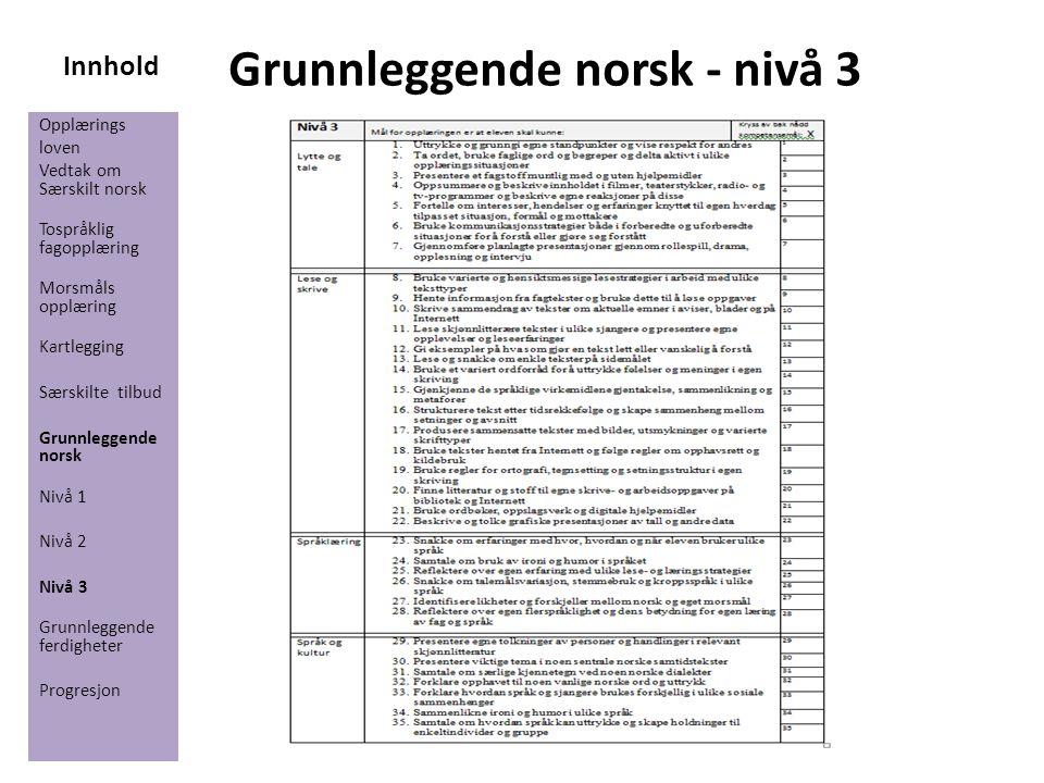 Innhold Grunnleggende norsk - nivå 3 Opplærings loven Vedtak om Særskilt norsk Tospråklig fagopplæring Morsmåls opplæring Kartlegging Særskilte tilbud