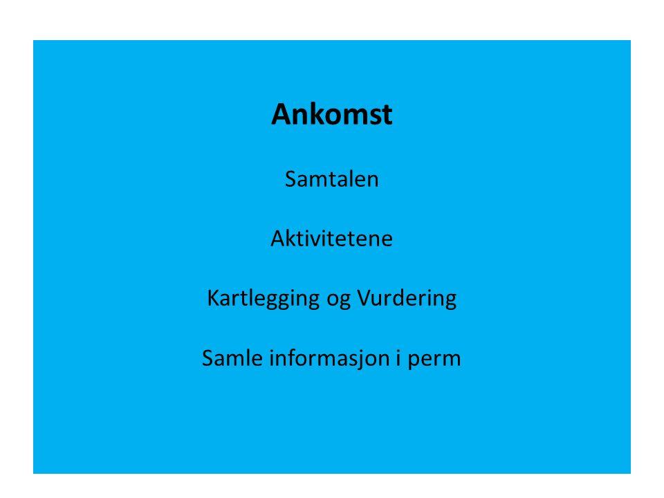 Ankomst Samtalen Aktivitetene Kartlegging og Vurdering Samle informasjon i perm