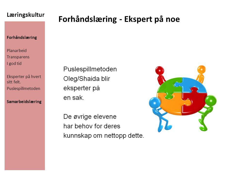 Læringskultur Forhåndslæring Planarbeid Transparens I god tid Eksperter på hvert sitt felt. Puslespillmetoden Samarbeidslæring Forhåndslæring - Eksper