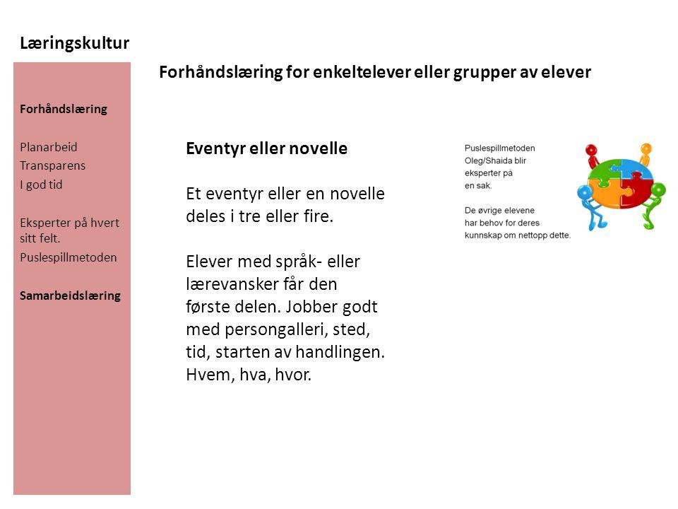 Læringskultur Forhåndslæring Planarbeid Transparens I god tid Eksperter på hvert sitt felt.