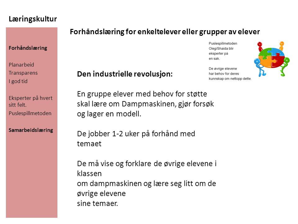 Læringskultur Forhåndslæring Planarbeid Transparens I god tid Eksperter på hvert sitt felt. Puslespillmetoden Samarbeidslæring Forhåndslæring for enke