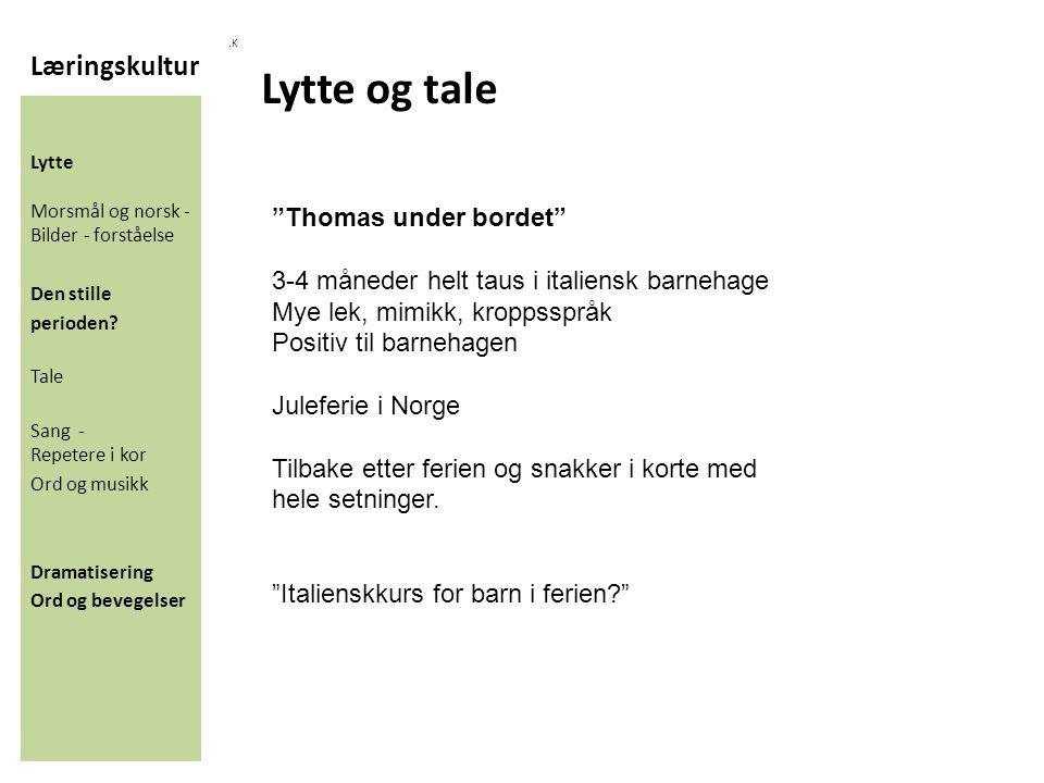 Læringskultur.K Lytte Morsmål og norsk - Bilder - forståelse Den stille perioden.