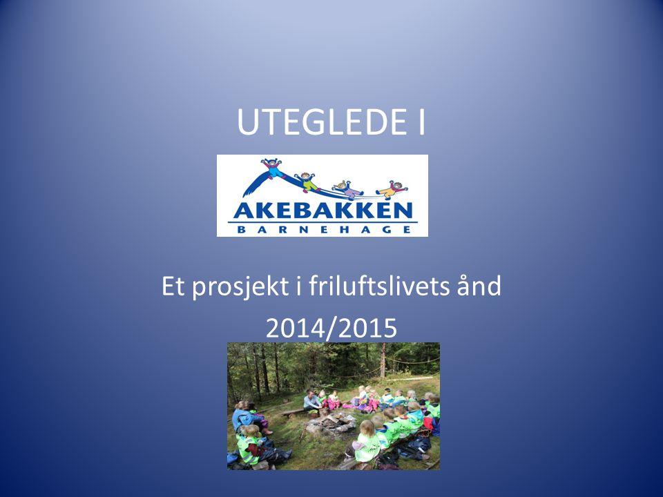 Prosjektbeskrivelse Bakgrunn: Akebakken barnehage var fra oppstart i 1997 en barnehage med tydelig friluftsprofil.