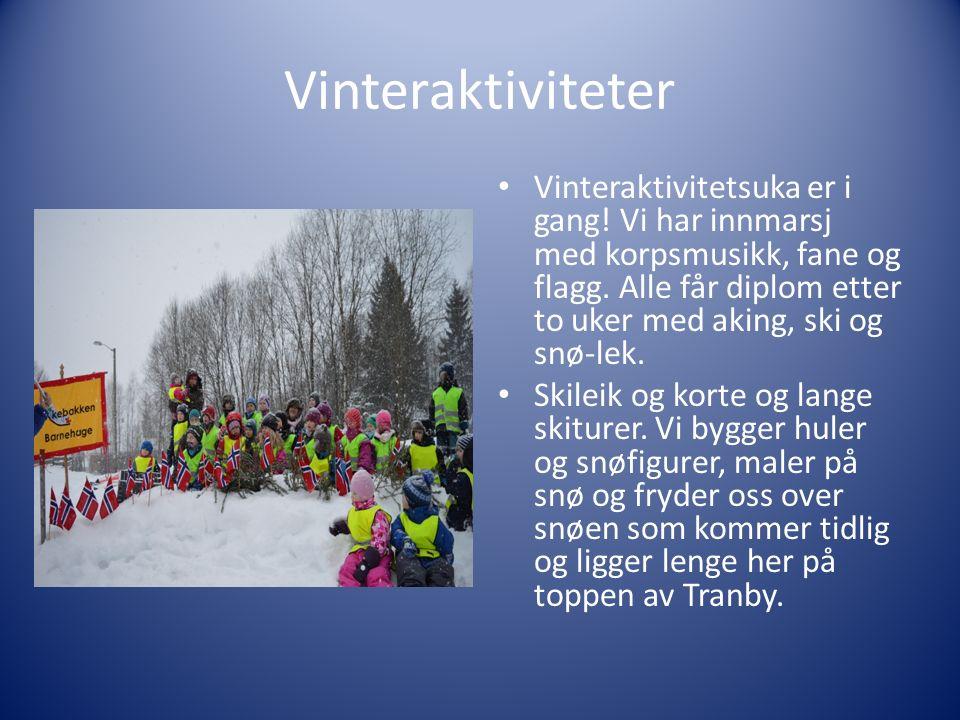 Vinteraktiviteter Vinteraktivitetsuka er i gang. Vi har innmarsj med korpsmusikk, fane og flagg.
