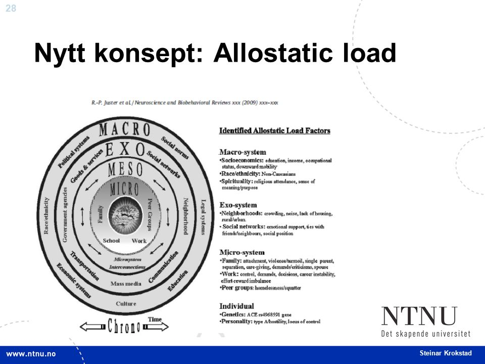 28 Steinar Krokstad Nytt konsept: Allostatic load