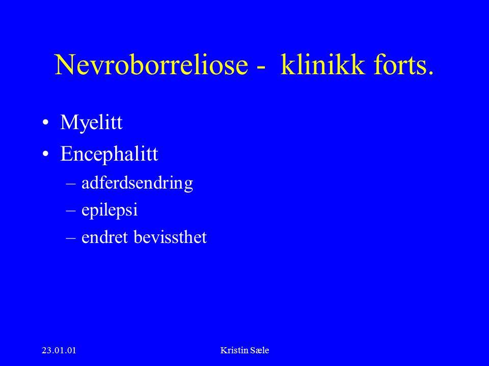 23.01.01Kristin Sæle Nevroborreliose - klinikk forts.