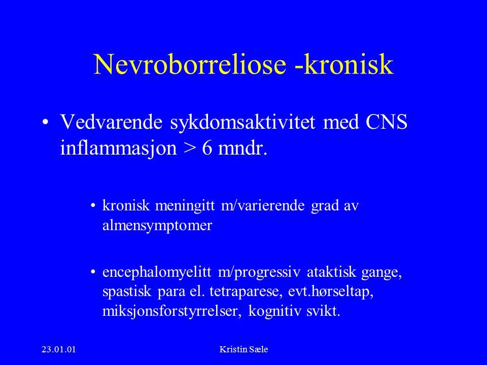 23.01.01Kristin Sæle Nevroborreliose -kronisk Vedvarende sykdomsaktivitet med CNS inflammasjon > 6 mndr.