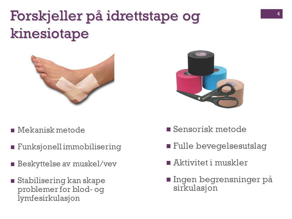 Biotensegrety En skade eller begrensning ett sted i kroppen vil gi ringvirkninger i resten av kroppen, på samme måte vil behandling i ett område påvirke helheten.