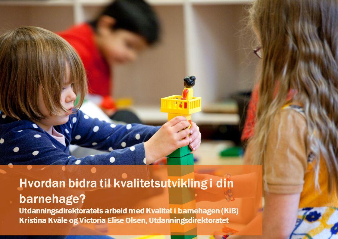 Hvordan bidra til kvalitetsutvikling i din barnehage.