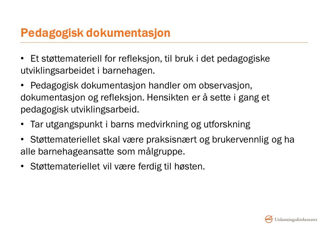 Pedagogisk dokumentasjon Et støttemateriell for refleksjon, til bruk i det pedagogiske utviklingsarbeidet i barnehagen.