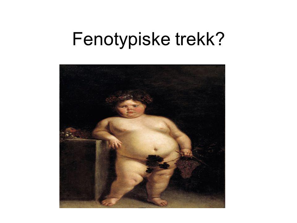 Fenotypiske trekk