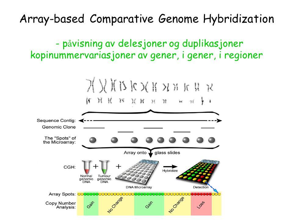 Array-based Comparative Genome Hybridization - p å visning av delesjoner og duplikasjoner kopinummervariasjoner av gener, i gener, i regioner