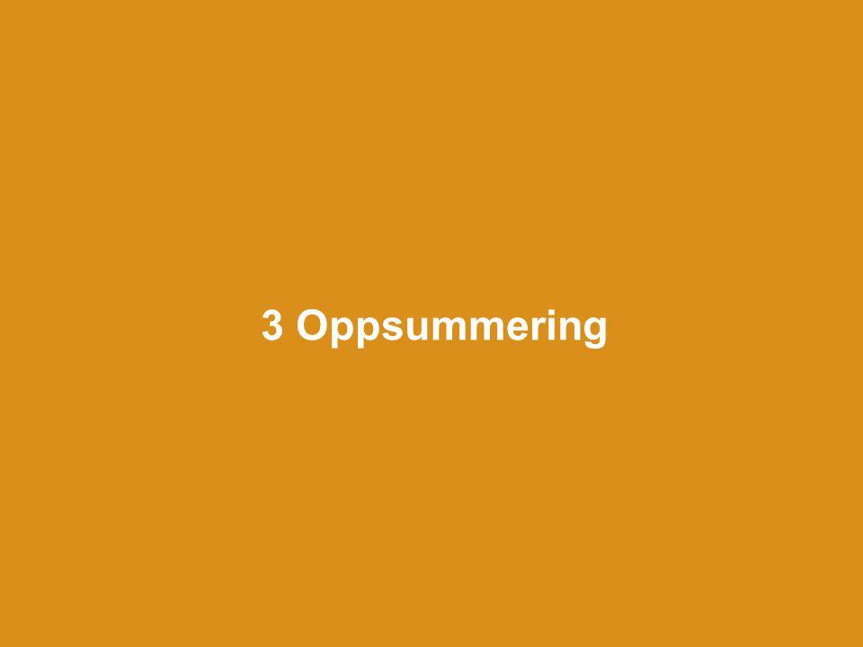3 Oppsummering