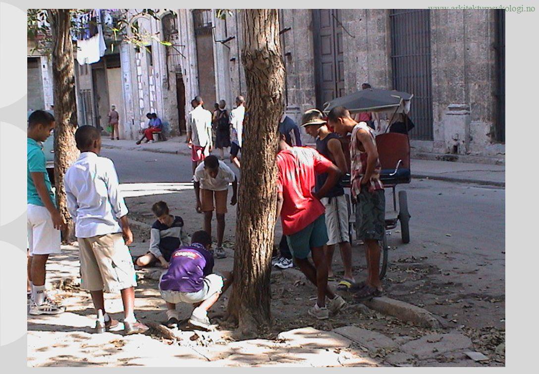 www.arkitekturpsykologi.no Odd Børresen: Ungene var på de stedene byplanen hadde glemt Copyright © rom 2010.