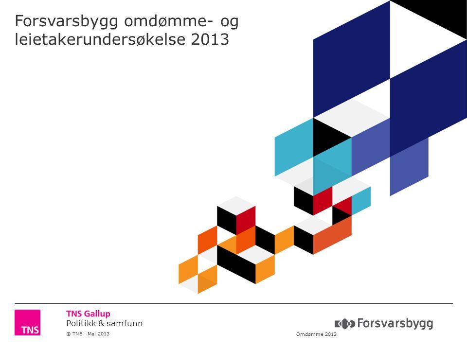 Politikk & samfunn © TNS Mai 2013 Omdømme 2013 Forsvarsbygg omdømme- og leietakerundersøkelse 2013