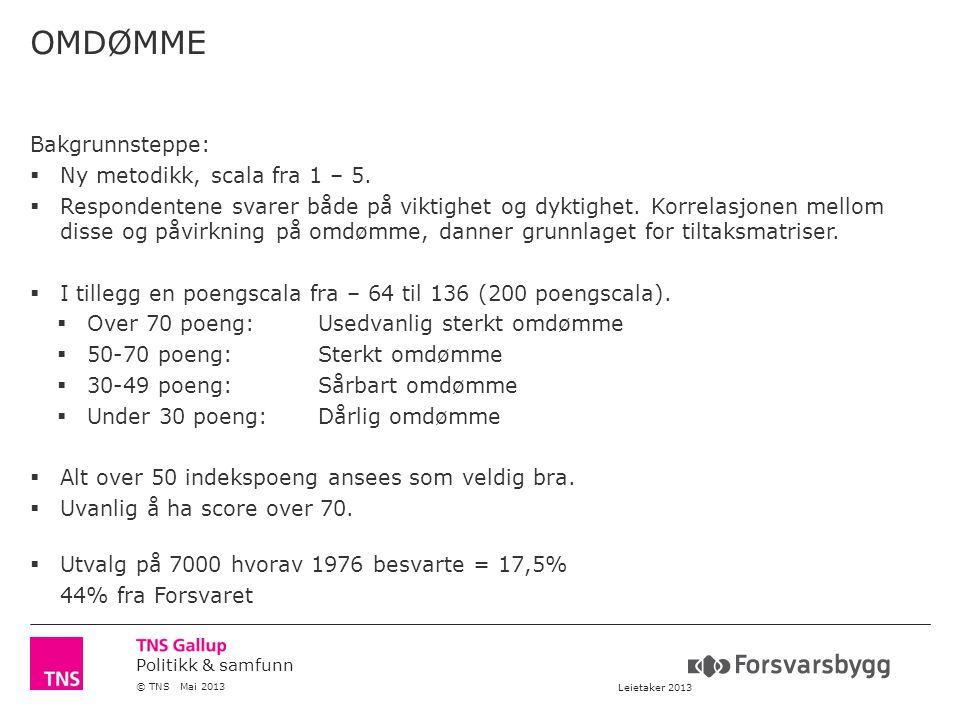 Politikk & samfunn © TNS Mai 2013 Leietaker 2013 OMDØMME Bakgrunnsteppe:  Ny metodikk, scala fra 1 – 5.