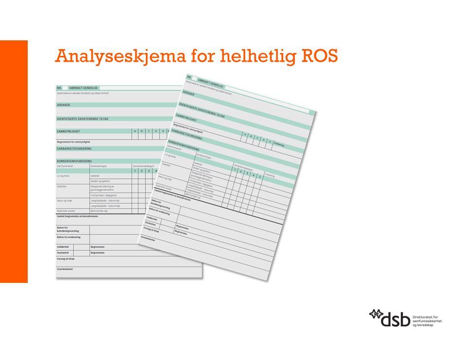 Analyseskjema for helhetlig ROS