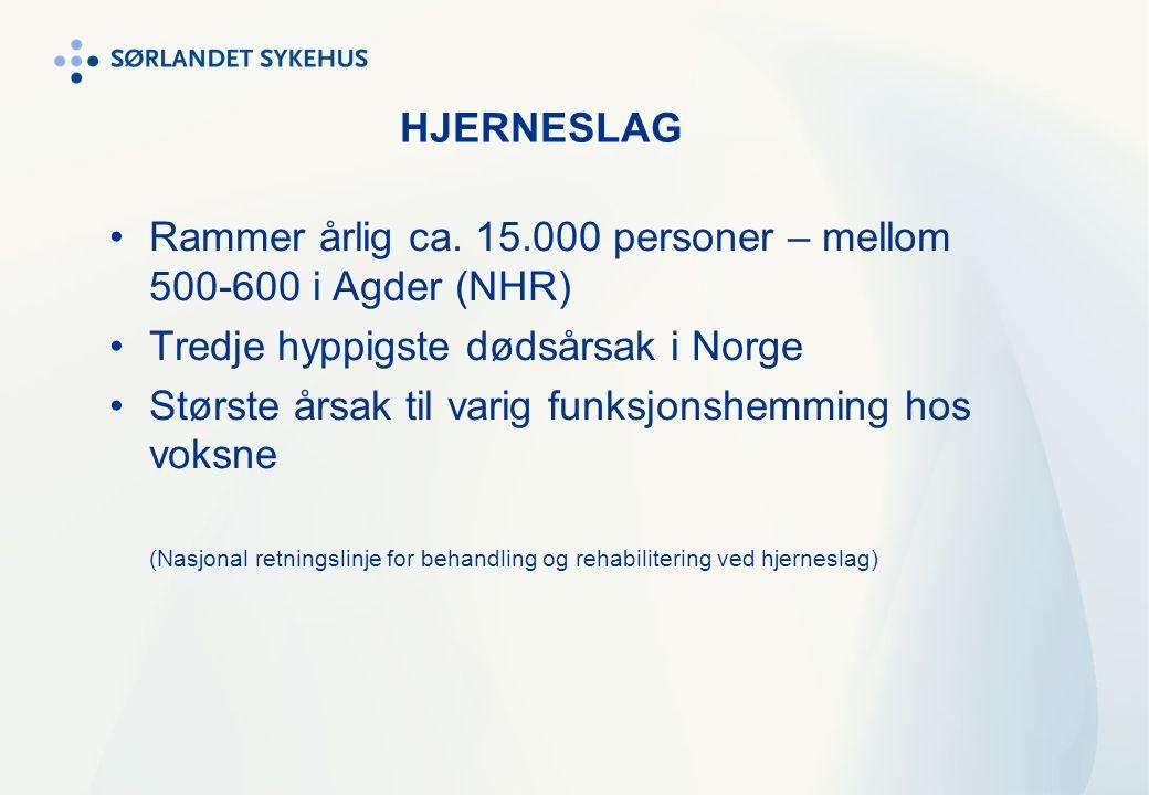 HJERNESLAG Rammer årlig ca. 15.000 personer – mellom 500-600 i Agder (NHR) Tredje hyppigste dødsårsak i Norge Største årsak til varig funksjonshemming