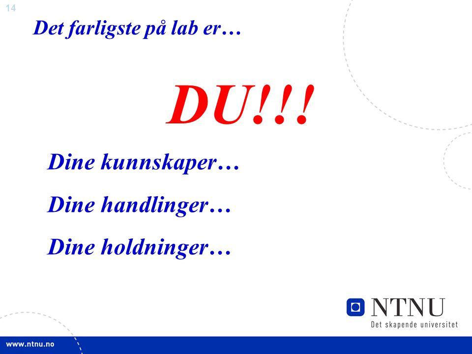 14 Det farligste på lab er… DU!!! Dine kunnskaper… Dine handlinger… Dine holdninger…