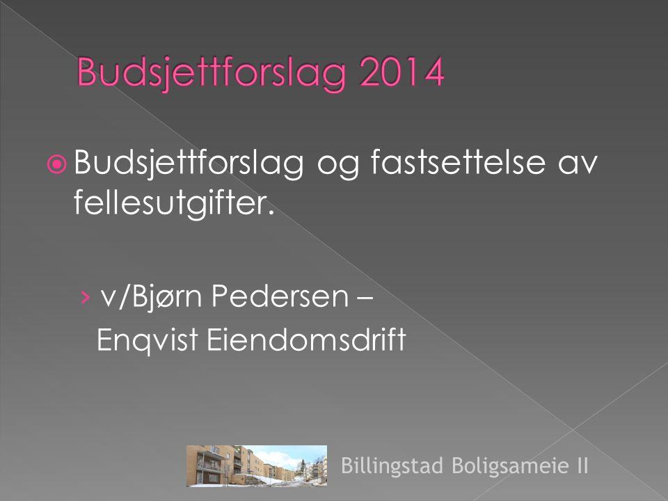  Budsjettforslag og fastsettelse av fellesutgifter.