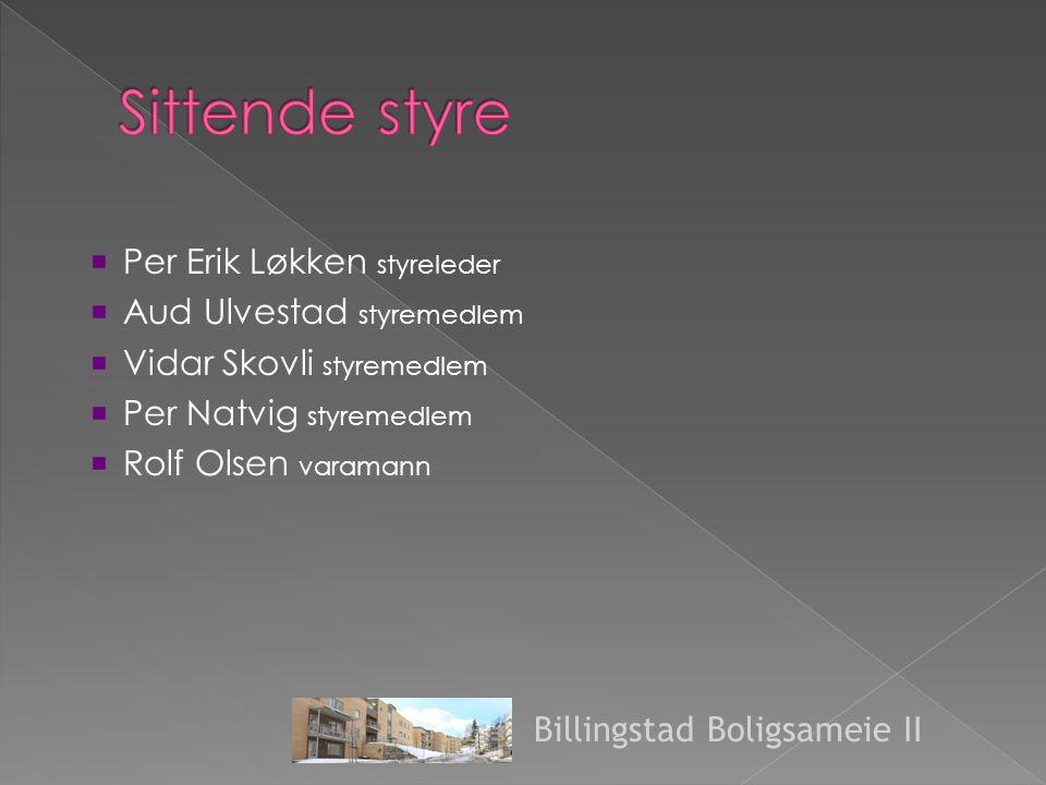  Per Erik Løkken styreleder  Aud Ulvestad styremedlem  Vidar Skovli styremedlem  Per Natvig styremedlem  Rolf Olsen varamann Billingstad Boligsameie II