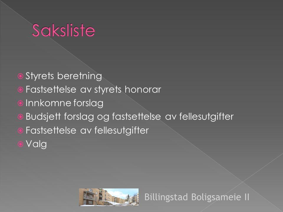  Styrets beretning  Fastsettelse av styrets honorar  Innkomne forslag  Budsjett forslag og fastsettelse av fellesutgifter  Fastsettelse av fellesutgifter  Valg Billingstad Boligsameie II
