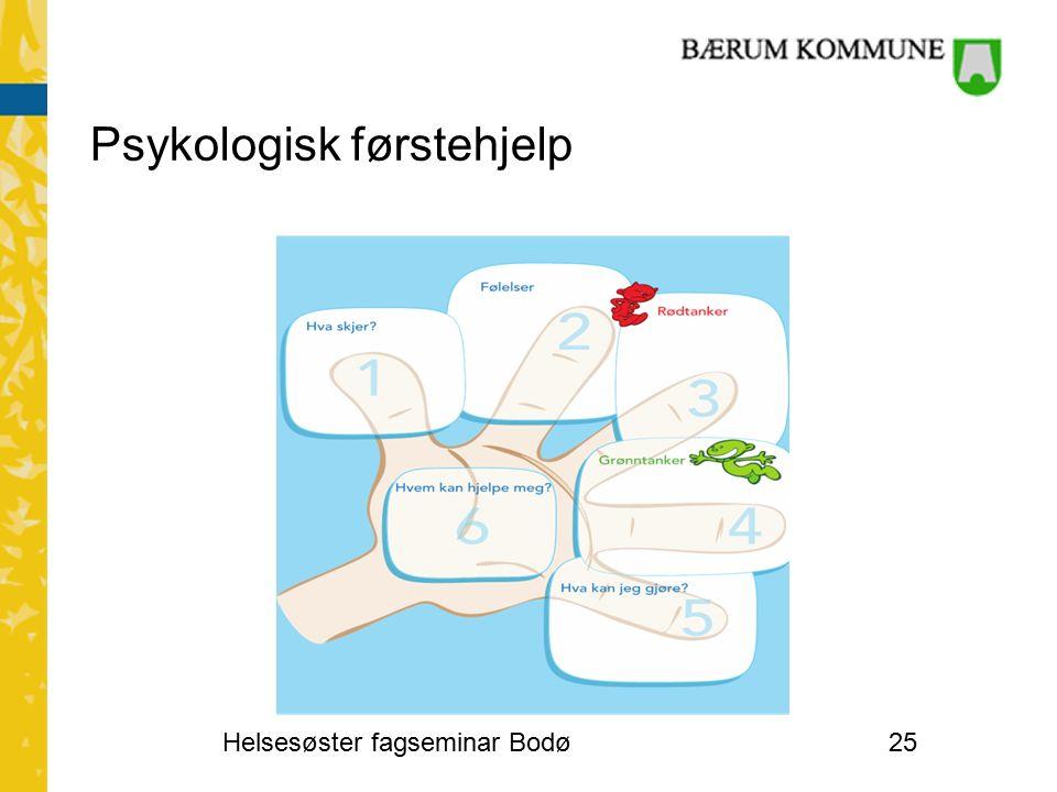 Psykologisk førstehjelp Helsesøster fagseminar Bodø25