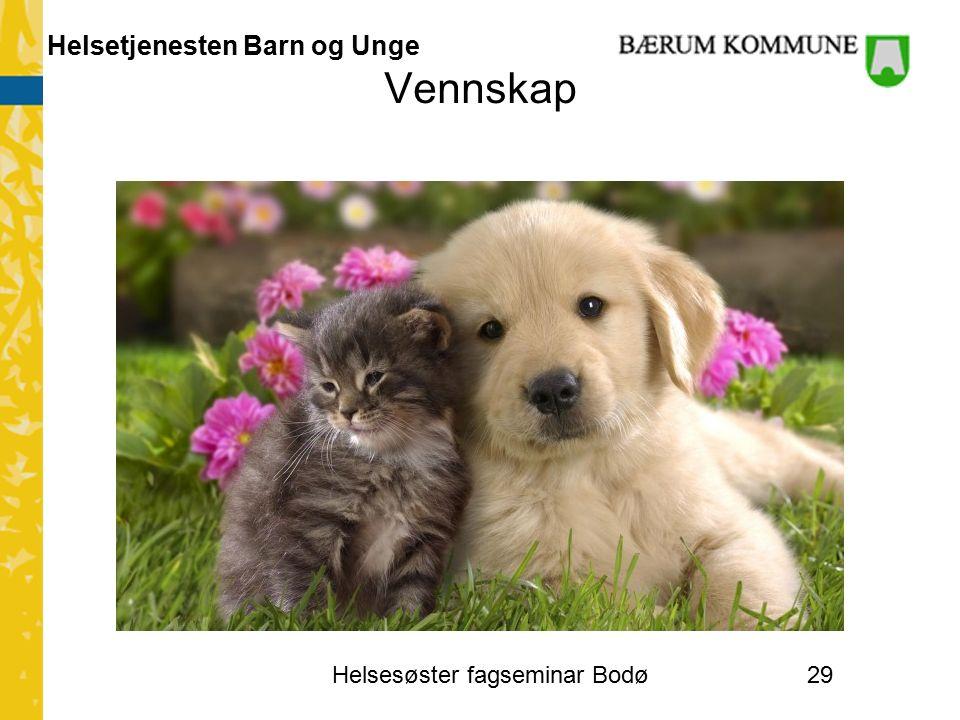 Helsetjenesten Barn og Unge Vennskap Helsesøster fagseminar Bodø29
