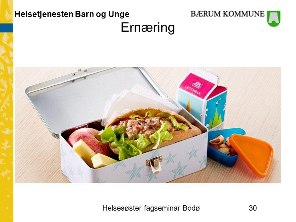 Helsetjenesten Barn og Unge Ernæring Helsesøster fagseminar Bodø30