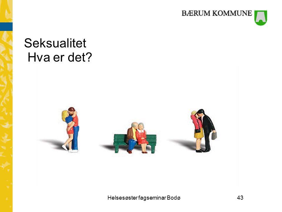 Seksualitet Hva er det Helsesøster fagseminar Bodø43