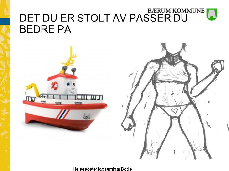 Helsesøster fagseminar Bodø 44 DET DU ER STOLT AV PASSER DU BEDRE PÅ