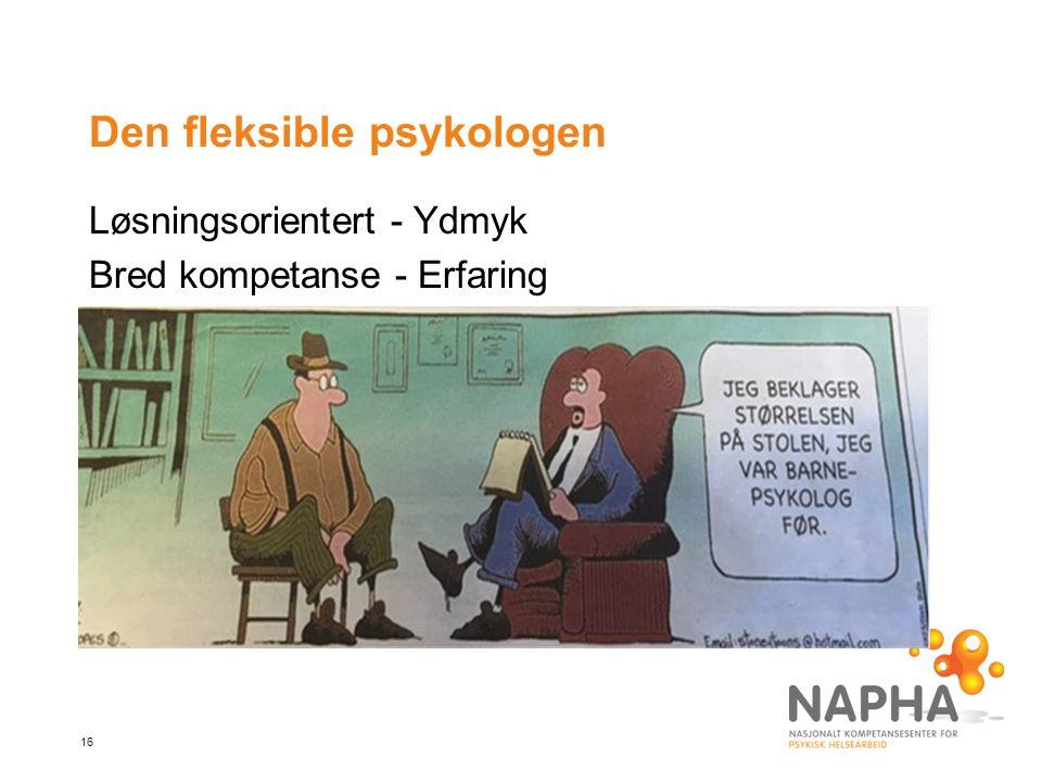 16 Den fleksible psykologen Løsningsorientert - Ydmyk Bred kompetanse - Erfaring