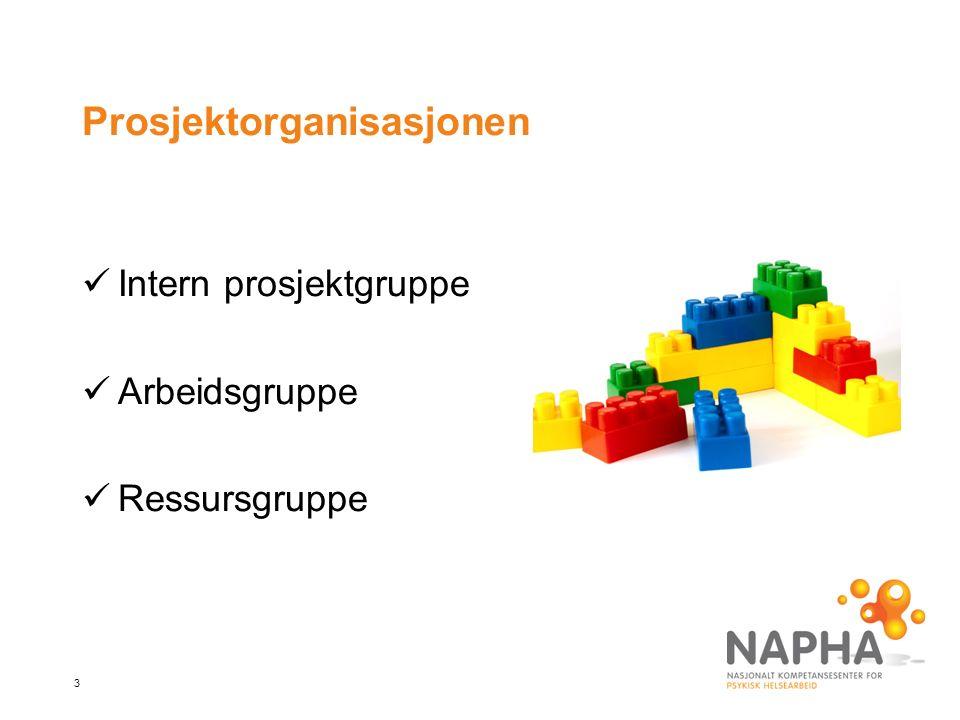 4 Intern prosjektgruppe i NAPHA EllenKjetilKristinLisbeth HoxmarkOrremTranePedersen
