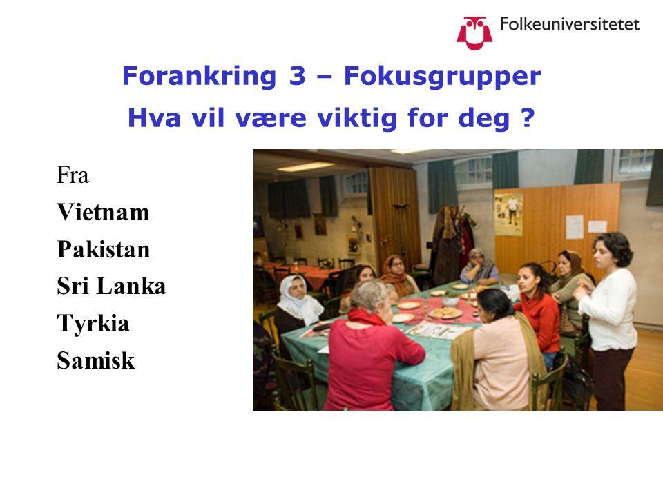 Forankring 3 – Fokusgrupper Hva vil være viktig for deg ? Fra Vietnam Pakistan Sri Lanka Tyrkia Samisk