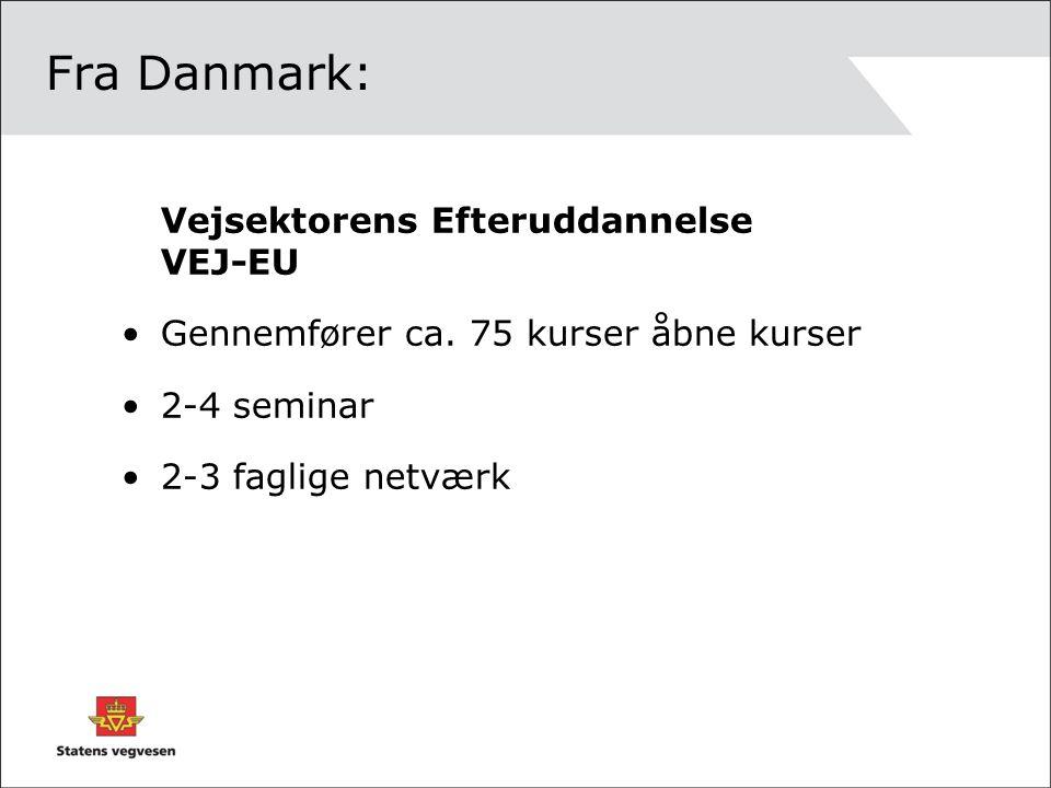 Fra Danmark: Vejsektorens Efteruddannelse VEJ-EU Gennemfører ca.
