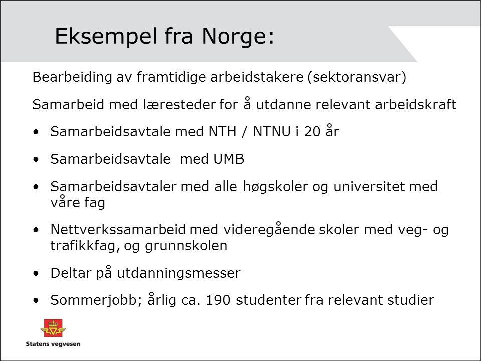 Eksempel fra Norge: Bearbeiding av framtidige arbeidstakere (sektoransvar) Samarbeid med læresteder for å utdanne relevant arbeidskraft Samarbeidsavtale med NTH / NTNU i 20 år Samarbeidsavtale med UMB Samarbeidsavtaler med alle høgskoler og universitet med våre fag Nettverkssamarbeid med videregående skoler med veg- og trafikkfag, og grunnskolen Deltar på utdanningsmesser Sommerjobb; årlig ca.