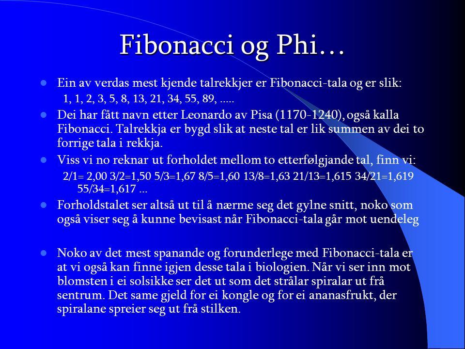 Fibonacci og Phi… Ein av verdas mest kjende talrekkjer er Fibonacci-tala og er slik: 1, 1, 2, 3, 5, 8, 13, 21, 34, 55, 89,..... Dei har fått navn ette