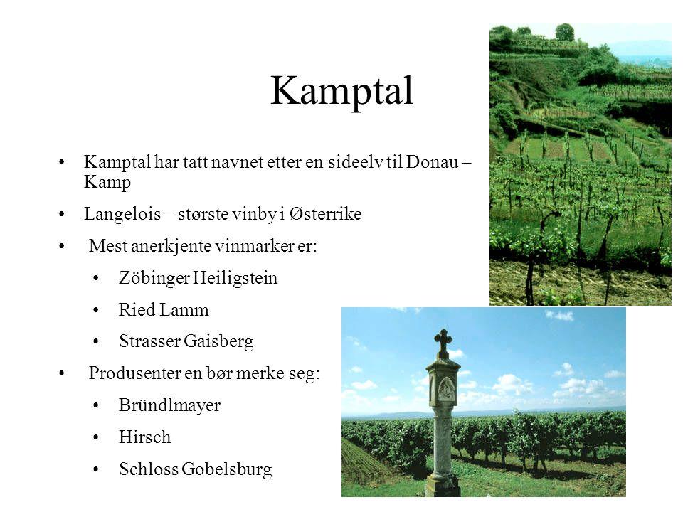 Kamptal Kamptal har tatt navnet etter en sideelv til Donau – Kamp Langelois – største vinby i Østerrike Mest anerkjente vinmarker er: Zöbinger Heiligstein Ried Lamm Strasser Gaisberg Produsenter en bør merke seg: Bründlmayer Hirsch Schloss Gobelsburg