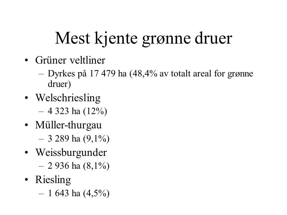 Mest kjente grønne druer Grüner veltliner –Dyrkes på 17 479 ha (48,4% av totalt areal for grønne druer) Welschriesling –4 323 ha (12%) Müller-thurgau –3 289 ha (9,1%) Weissburgunder –2 936 ha (8,1%) Riesling –1 643 ha (4,5%)