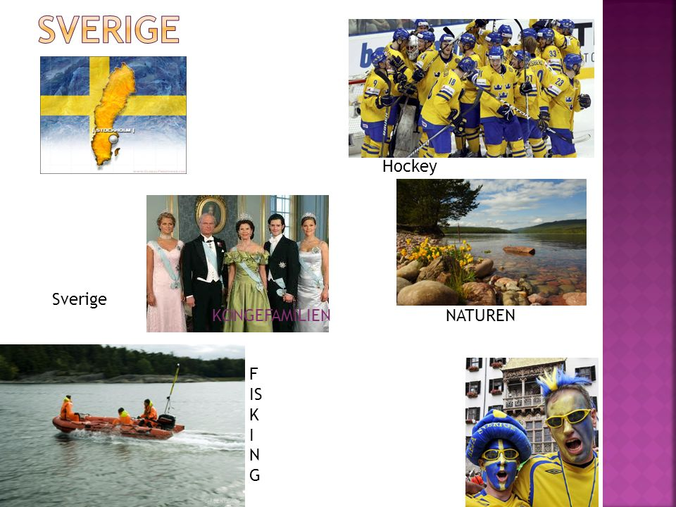 Hockey Sverige F IS K I N G KONGEFAMILIEN NATUREN