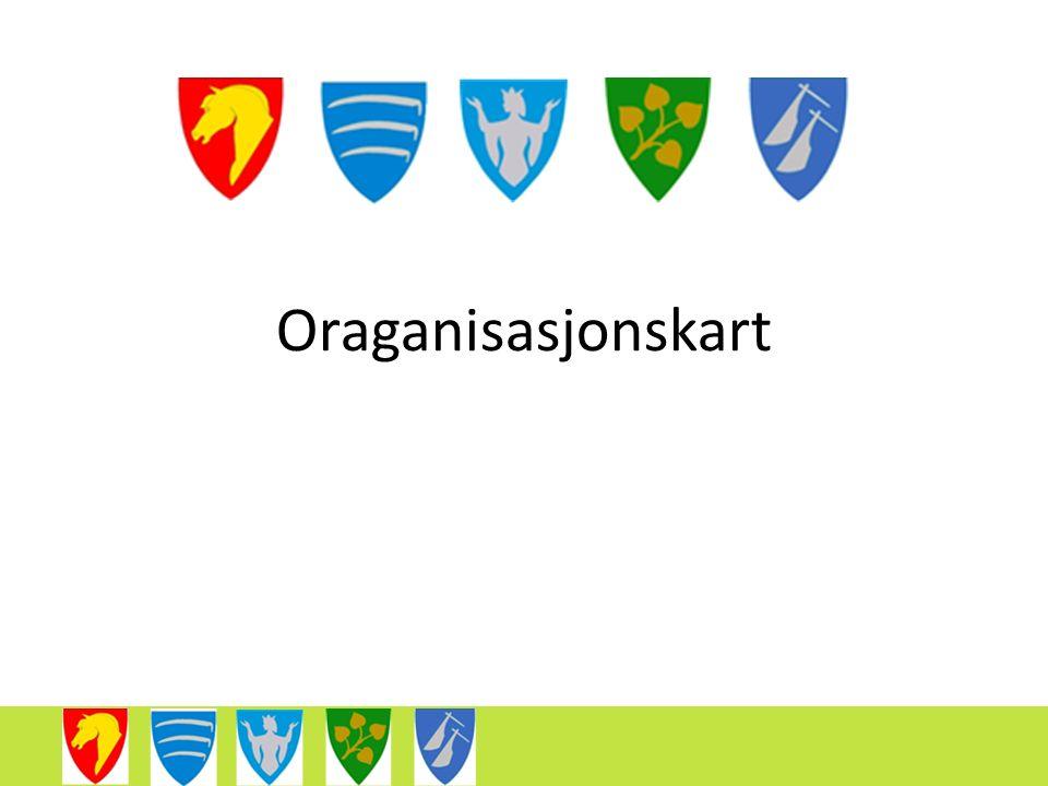 Oraganisasjonskart