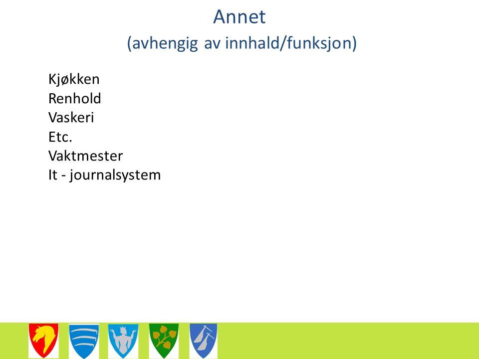 Annet (avhengig av innhald/funksjon) Kjøkken Renhold Vaskeri Etc. Vaktmester It - journalsystem