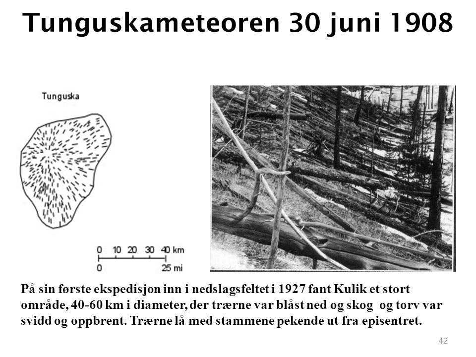 42 Tunguskameteoren 30 juni 1908 På sin første ekspedisjon inn i nedslagsfeltet i 1927 fant Kulik et stort område, 40-60 km i diameter, der trærne var blåst ned og skog og torv var svidd og oppbrent.