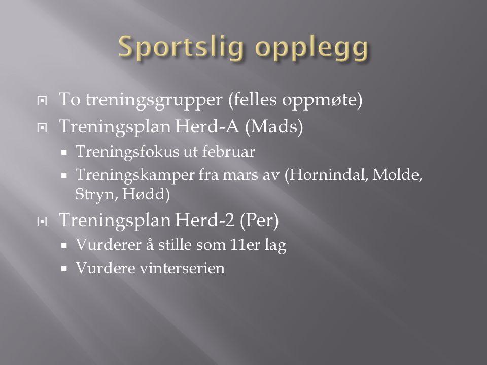  To treningsgrupper (felles oppmøte)  Treningsplan Herd-A (Mads)  Treningsfokus ut februar  Treningskamper fra mars av (Hornindal, Molde, Stryn, Hødd)  Treningsplan Herd-2 (Per)  Vurderer å stille som 11er lag  Vurdere vinterserien