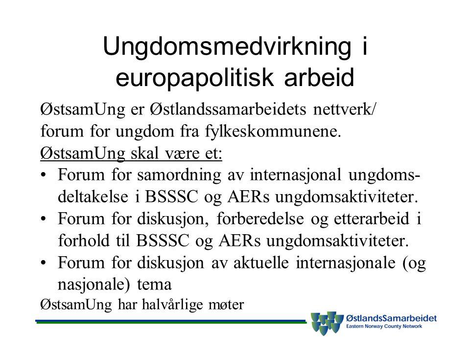 Ungdomsmedvirkning i europapolitisk arbeid ØstsamUng er Østlandssamarbeidets nettverk/ forum for ungdom fra fylkeskommunene. ØstsamUng skal være et: F
