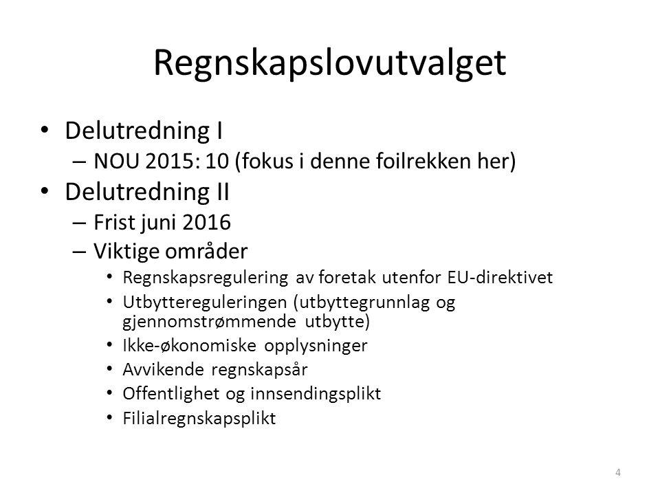 Mandat delutredning I 1.Gjennomføre nytt konsolidert regnskapsdirektiv 2.Endringer ut over direktivet Bibetingelser: Kvalitet og nytte-kostnad (differensiering) 3.Mer tilknytning til internasjonale standarder 4.Vurdere god regnskapsskikk og grunnlaget for standardsetting Evaluere Norsk RegnskapsStiftelses rolle i arbeidet med standarder 5