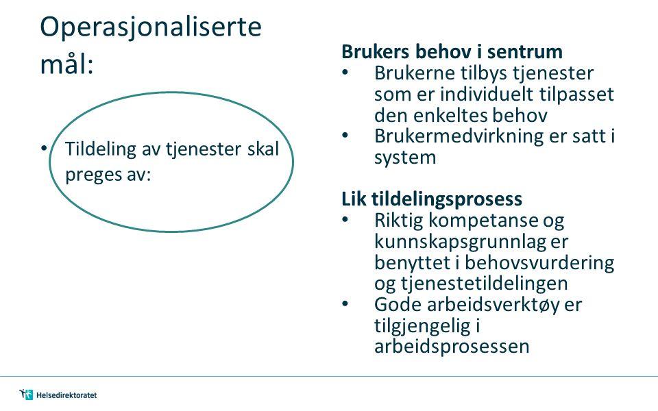 Operasjonaliserte mål: Tildeling av tjenester skal preges av: Brukers behov i sentrum Brukerne tilbys tjenester som er individuelt tilpasset den enkel