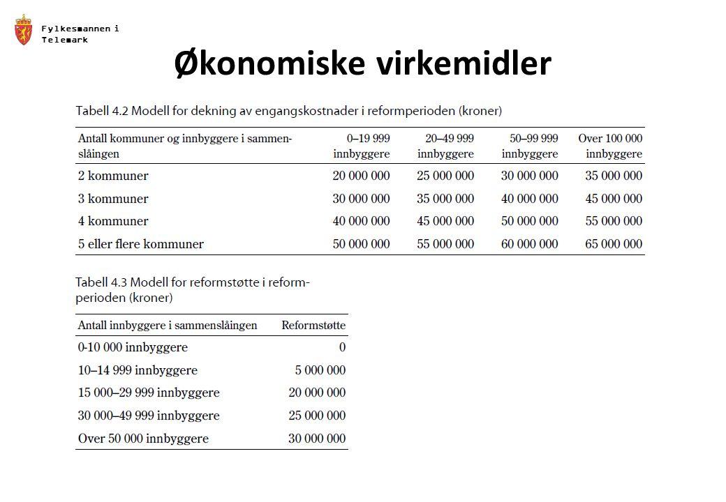 Fylkesmannen i Telemark Økonomiske virkemidler