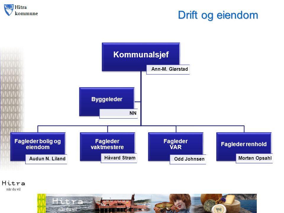 Kommunalsjef Ann-M. Glørstad Fagleder bolig og eiendom Audun N.