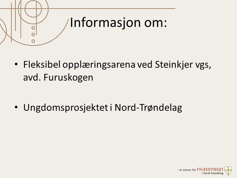 Informasjon om: Fleksibel opplæringsarena ved Steinkjer vgs, avd.